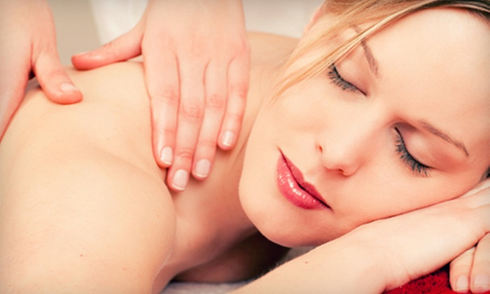 blush a day spa - Sonoma: $149 for a Spa Day with Light-Therapy Facial, Brow Shaping, and Massage or Scrub at blush a day spa (Up to $390 Value)
