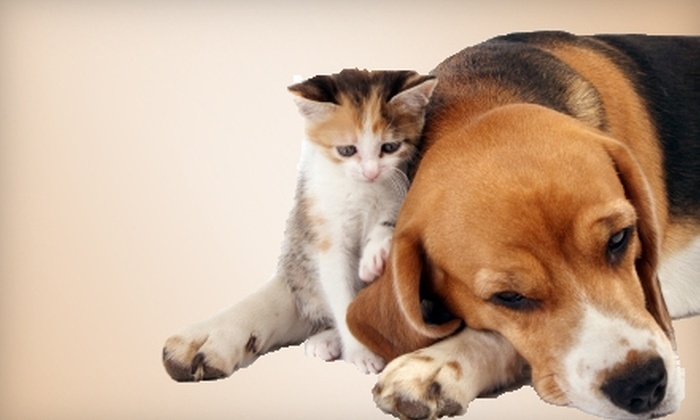 Pets Plus - Lubbock: $10 for $20 Worth of Pets and Pet Products at Pets Plus