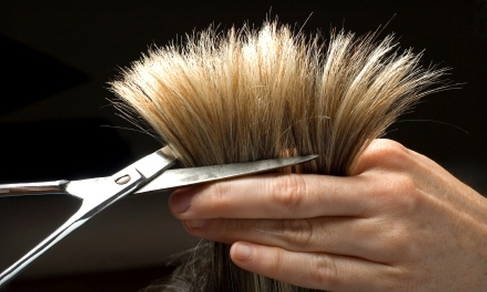 Salon Anokha - Oakland Park: $45 for $100 Worth of Cut and Color Services at Salon Anokha