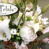 Funky Petals - Place LaRue: $25 for $50 Worth of Flower Arrangements from Funky Petals Flower Shop