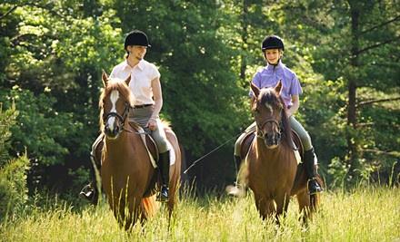 1-Hour Winter Horseback-Riding Class (a $20 value) - White Horse Equestrian in Streetsboro