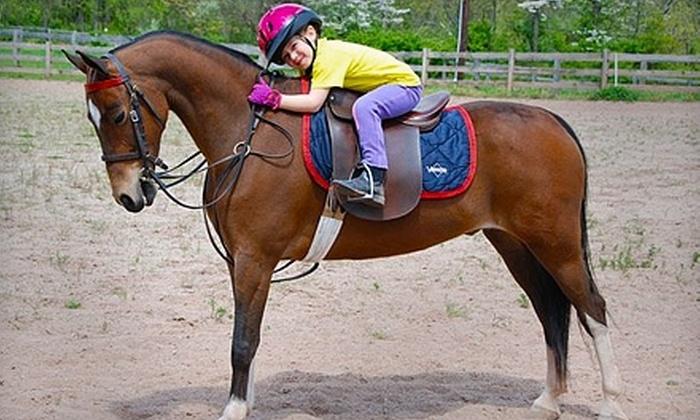 Kierson Farm - Flemington: $30 for a Private Horseback-Riding Lesson at Kierson Farm in Flemington ($60 Value)