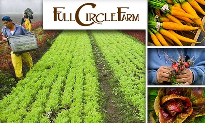 Full Circle Farm - Seattle: $25 for $50 Worth of Organic Produce with Delivery Option from Full Circle Farm