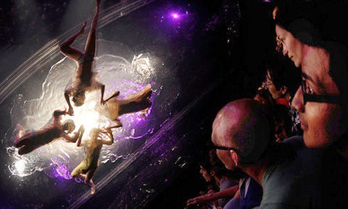 """Fuerza Bruta: Look Up - Union Square: $39 for One Ticket to """"Fuerza Bruta: Look Up"""" at Daryl Roth Theatre ($79 Value)"""