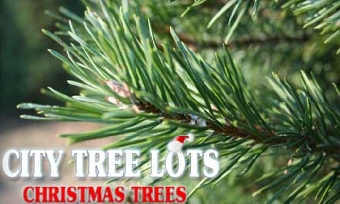 City Tree Lots - Multiple Locations: $39 for a 6- to 7.5-Foot Fraser Fir Tree at City Tree Lots ($80 Value). Choose from Two Locations.