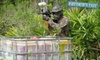 GTF Paintball - Yulee: $22 for a Half-Day Field Pass, Equipment Rental, and 500 Paintballs at GTF Paintball in Yulee (Up to $45 Value)