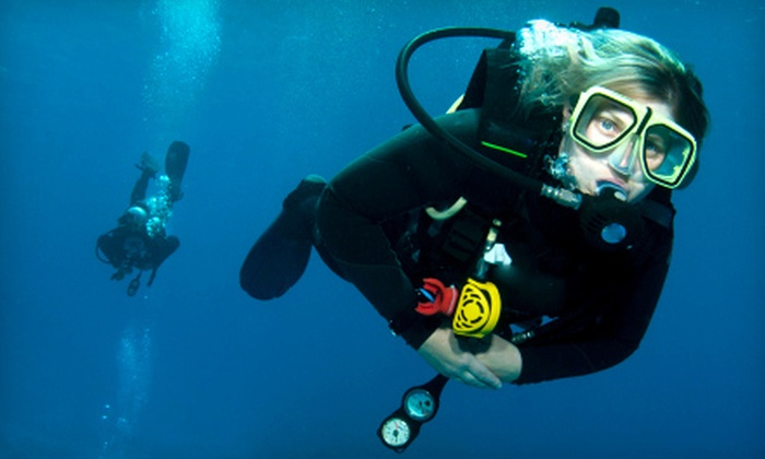 Panama City Dive Charters - Gulf Lagoon Beach: $89 for a Discover Scuba Diving Course for Two at Panama City Dive Charters ($200 Value)