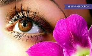 Noelle's Spa at Garden of Eden Healing Salon: Up to 56% Off Eyelash Extensions at Noelle's Spa at Garden of Eden Healing Salon