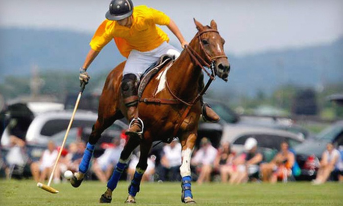 Brandywine Polo Club - Toughkenamon: $50 for One VIP Admission to the Philadelphia Cup Polo Match at Brandywine Polo Club on July 24 in Toughkenamon