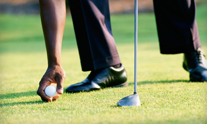 Missing Link Golf Academy - Lakewood: One, Two, or Three Private Golf Lessons at Missing Link Golf Academy in Lakewood Ranch (Up to 68% Off)