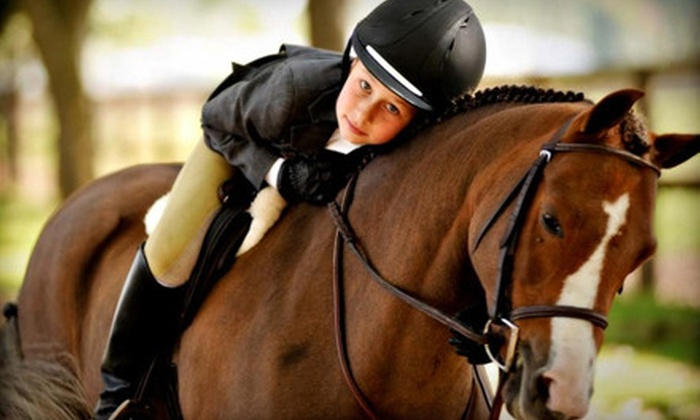 Leone Equestrians - Sacramento: One or Three One-Hour Horseback-Riding Lessons at Leone Equestrians (Up to 62% Off)