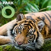 $6 for Zoo Admission