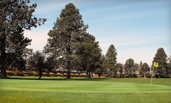 Meadowlawn Golf Course - Salem OR: Golf for Two at Meadowlawn Golf Course. Three Options Available.