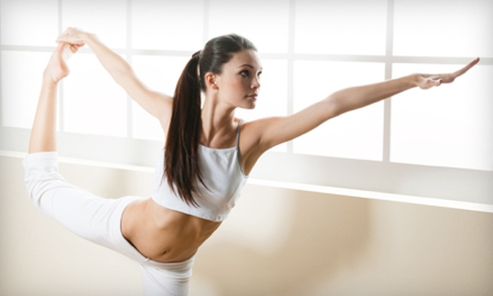 Pure Life Yoga & Wellness Center - Tinley Park: $30 for Five Yoga Classes at Pure Life Yoga & Wellness Center in Tinley Park ($60 Value)