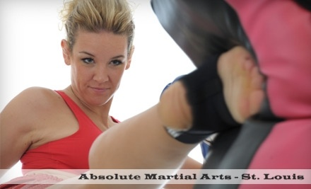 Absolute Martial Arts - Absolute Martial Arts in St. Louis