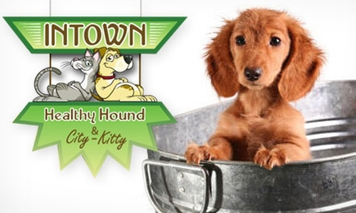 Intown Healthy Hound & City-Kitty - Atlanta: $5 for a Self-Serve Dog Wash at Intown Healthy Hound & City-Kitty (Up to $15 value)