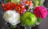 My Mother's Bloomers - Halifax: $25 for $50 Worth of Flower Arrangements at My Mother's Bloomers