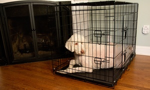 Foldable Double-door Pet Crate With Divider