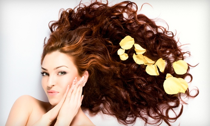 Aqua Salon - Edgebrook: Haircut and Style with Option of Partial Highlights or Full Color at Aqua Salon (Up to 62% Off)