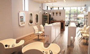 Zephyr Blowout Salon: Blowout and Deep Conditioning at Zephyr Blowout Salon (Up to 47% Off). Two Options Available.