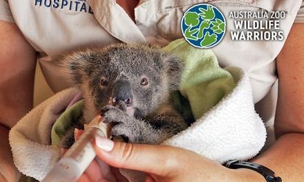 Donate To Aus Zoo Wildlife Warriors Australia Zoo