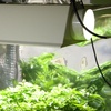 Half Off Hydroponic and Homebrew Equipment in Charlottesville