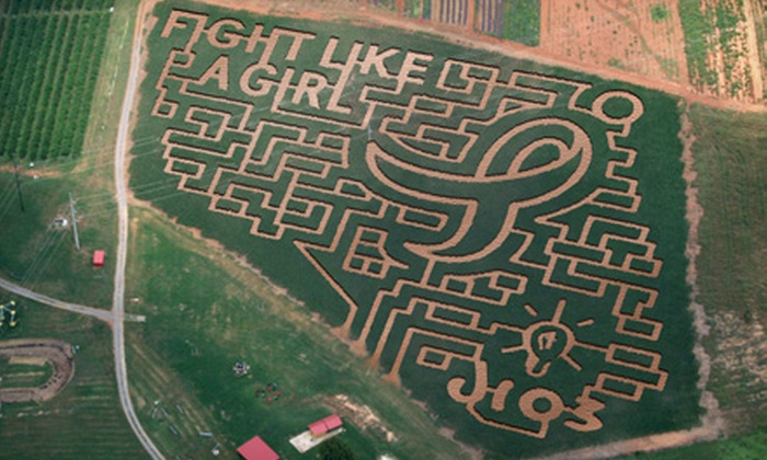 Mayfield Farm & Nursery - Athens: Group Corn-Maze Outings at Mayfield Farm & Nursery in Athens. Two Options Available.