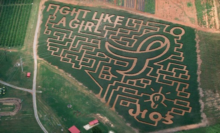 3 Corn Maze Tickets Before Oct. 16 or 2 Tickets After Oct. 16 (a $28 value) - Mayfield Farm & Nursery in Athens