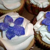 Up to 57% Off Cupcakes in Round Rock