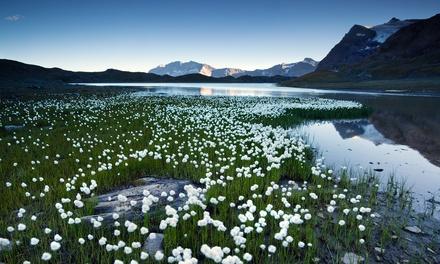 Valle d'Aosta, Case Gran Paradiso: fino a 7 notti in mono o bilocale e Village Card fino a 4 persone