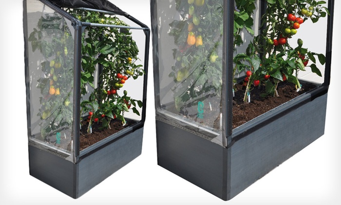 Grow Camp Ultimate Vegetable Grower: $259.99 for a Grow Camp Lean-To Ultimate Vegetable Grower ($399 List Price). Free Shipping and Returns.