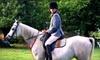 Labzara Ranch - Vandever Acres: $25 for Group Horseback-Riding Lessons at Labzara Ranch in Broken Arrow ($50 Value)