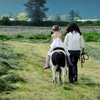 Half Off Tour at Bakerview EcoDairy