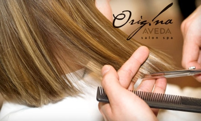 Origina Salon Spa - Franklin: $59 Haircut and Full Foil Treatment at Origina Salon Spa