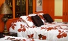 La Maison De Lucy - Alford: One- or Two-Night Stay in an Internationally Themed Room at La Maison de Lucy in Alford, FL