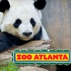 Up to 51% Off at Zoo Atlanta