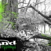 55% Off at Land Paintball