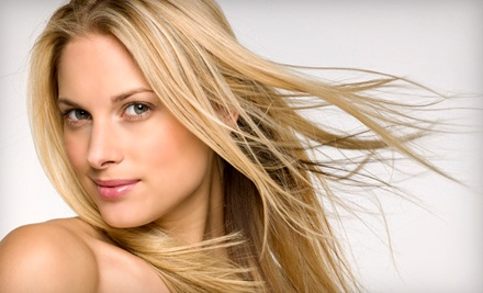 1 Brazilian Blowout (a $250 value) - Style Salon in Indianapolis