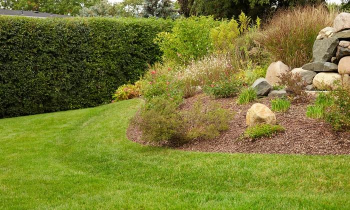 GrassRoots Organic Lawn Care - Washington DC: $33 for $60 Worth of Landscaping — Grassroots Organic Lawn Care