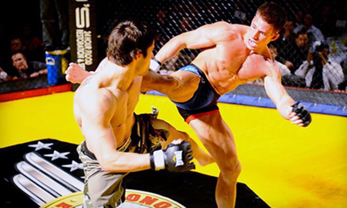 MMA Cage Fight Festival - Rochester: Two or Four VIP Tickets to MMA Cage Fight Festival at Meadow Brook Music Festival in Rochester Hills on September 10