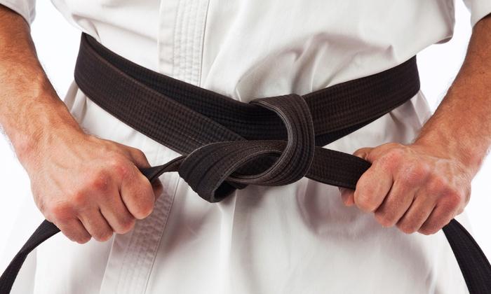 Tampa Bay Tang Soo Do Center - Oakford Park: Ten or Twenty Martial Arts Classes at Tampa Bay Tang Soo Do Center (Up to 88% Off)