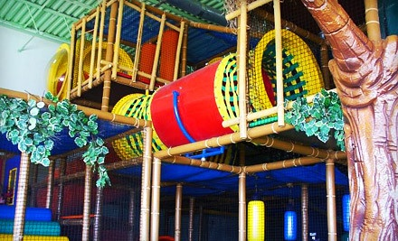 All Day Play Including Playground Admission and Unlimited Laser Tag for 2 Kids (a $28 value) - Amazone Family Entertainment Center in Medina