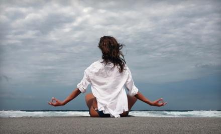 Westchase Pilates & Yoga - Westchase Pilates & Yoga in Tampa