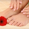 Up to 69% Off Mani-Pedis or Unlimited Nail Services in Brooklyn