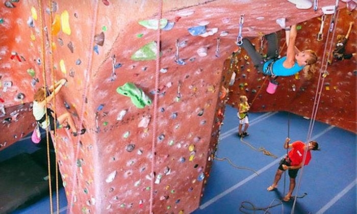 ClimbX - Huntington Beach: $59 for a Kids' Rock-Climbing Camp at ClimbX ($120 Value). Seven Options Available.