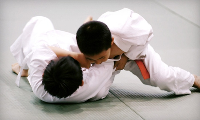 Kaijin Mixed Martial Arts - Westside,Natural Bridges: One Month of Unlimited Adult or Children's MMA Classes or 10 Classes at Kaijin Mixed Martial Arts (Up to 83% Off)