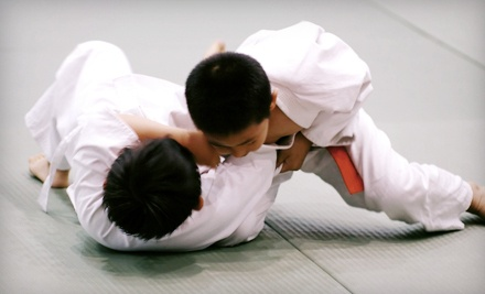 1 Month of Unlimited Classes for One Child or One Adult - Kaijin Mixed Martial Arts in Santa Cruz