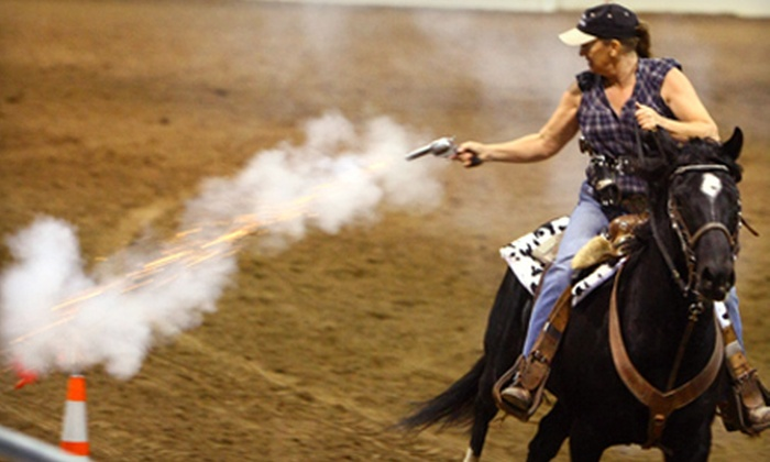 Festival of Horses - Gilbert: Festival of Horses Outing for Two or Four on November 11 or 12 in Queen Creek (Up to Half Off)