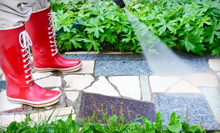 $100 Groupon for Window Cleaning, Gutter Cleaning, and Pressure Washing - Truly Clear Window Cleaning and Pressure in