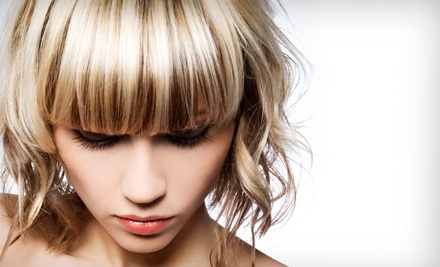 Shampoo, Haircut, Deep-Conditioning Treatment, Blowout and Style - Silver Image in Mt Juliet